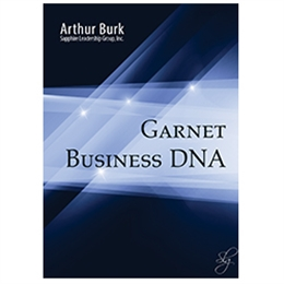 Garnet Business DNA - 3 CD set